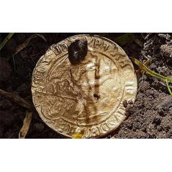 Мать забрала у своего сына металлоискатель и нашла золотую монету