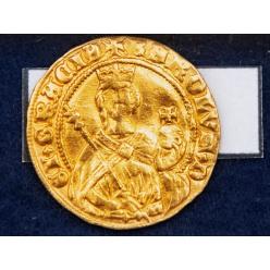 Кабан помог найти клад из золотых и серебряных монет