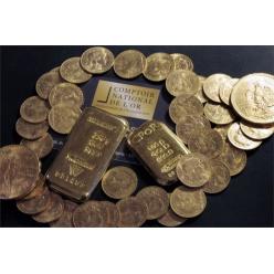 Француз нашел в поместье 100 кг золота