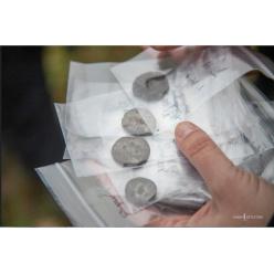 Любитель в Эстонии получит 30 000 евро за найденный клад