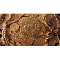 Семья нашла золотой клад на миллион долларов